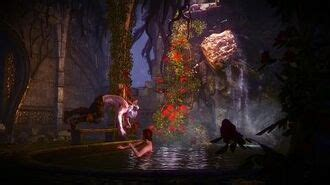 The Witcher 2: Assassins of Kings - Guide to Romance